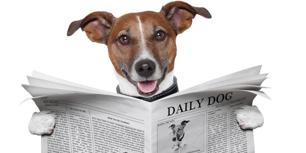 readinglist-dog-reading-1200600