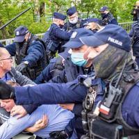 Jaka policja po policji